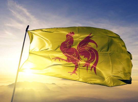 Waalse vlag