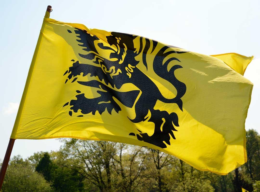 Vlaamse vlag